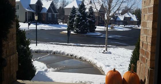 In Denial of Snow